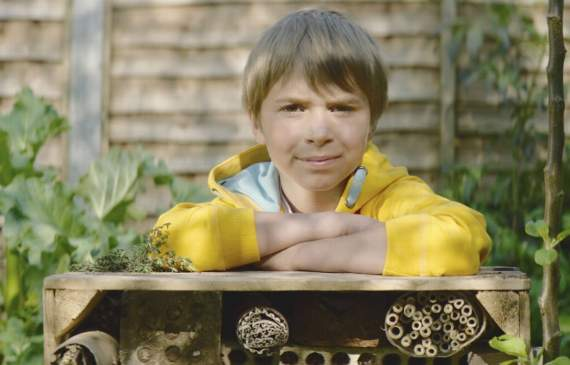 How to build your own bug hotel with the kids this summer